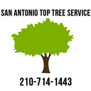 san antonio top tree service logo